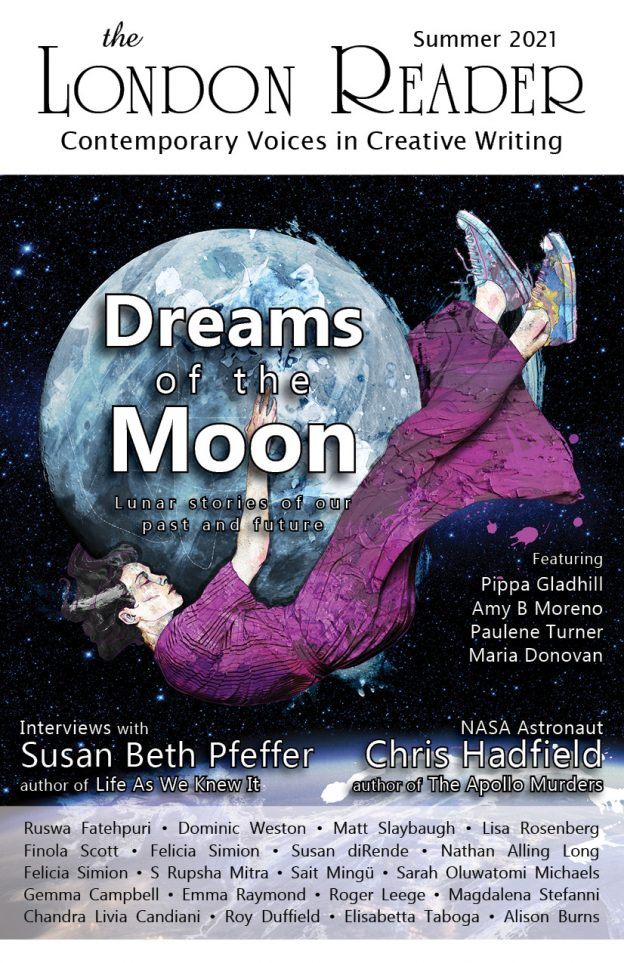 Dreams of the Moon Cover